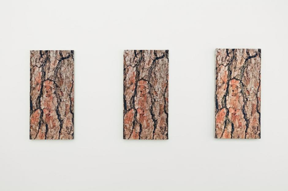 Studio art 1: Mänty sarja, kolme akustotaulua