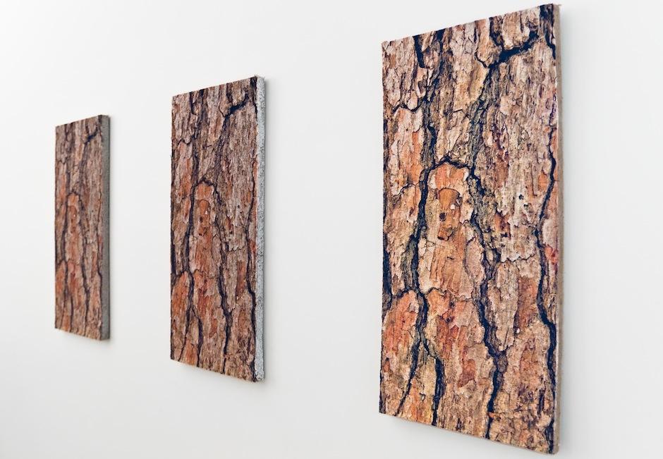 Studio art 1: Mänty -sarja, kolme akustotaulua